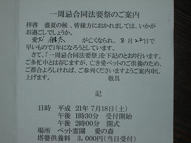 CIMG3331.JPG