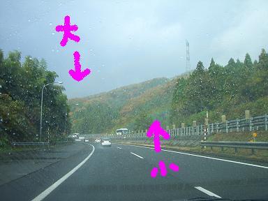コピー ~ CIMG5934.JPG