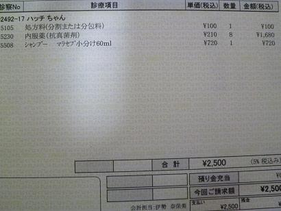 P1020875.JPG