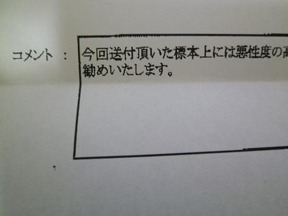 P1030093-e8392.jpg