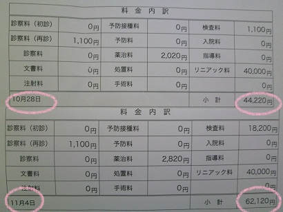 P1010894.JPG
