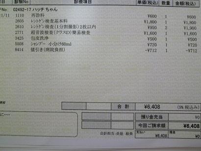 P1020872.JPG
