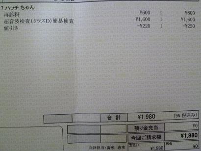 P1020879.JPG