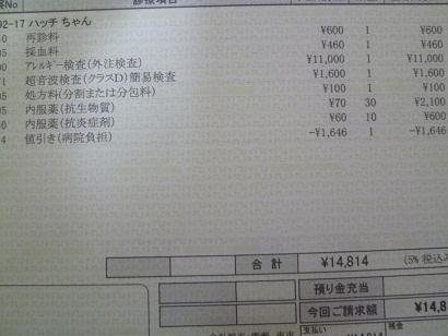 P1020881.JPG