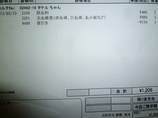 P1070585.JPG
