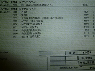 P1070587.JPG